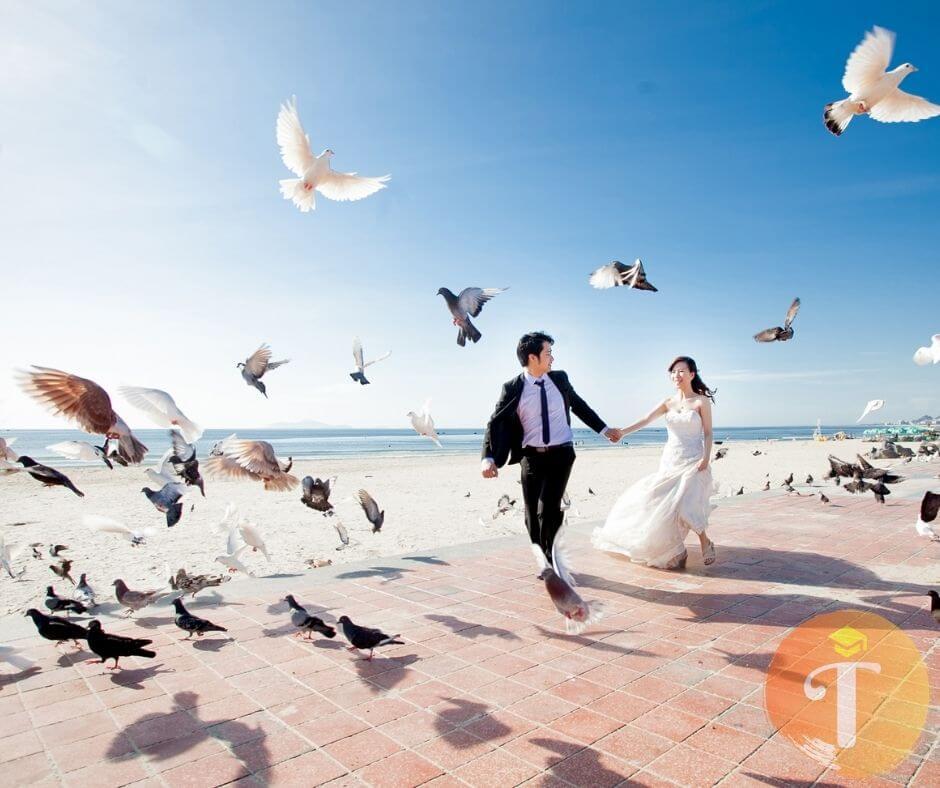 Các gói chụp ảnh cưới của TuArt đà nẵng